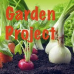 vegetables-garden-24199639