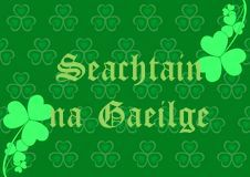 Image result for seachtain na gaeilge images